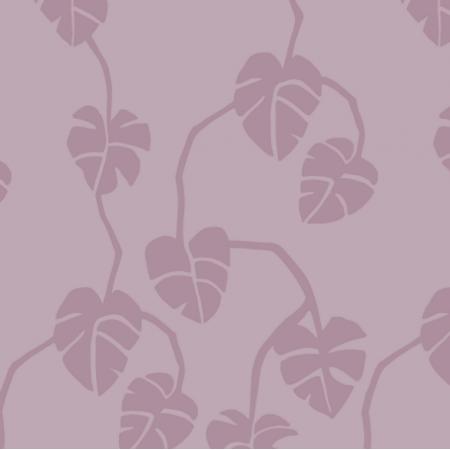 16850 | MOSTERA - DIRT PINK2