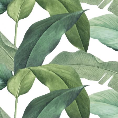 Fabric 16916 | Bananowiec-03