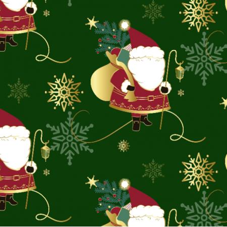 16922 | Santa_002