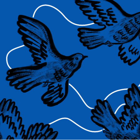 16968 | blue paloma