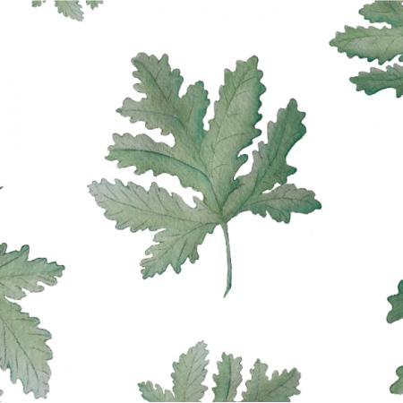 Tkanina 16977 | geranium W