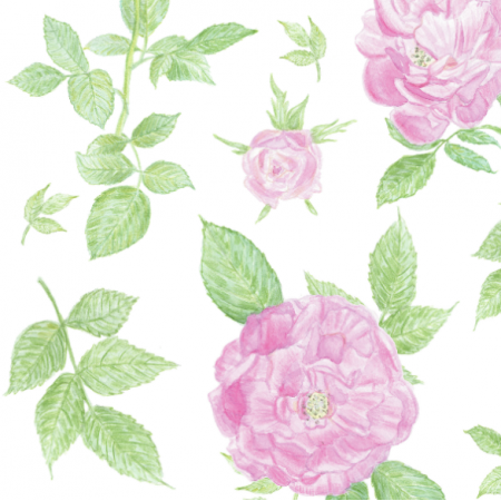 17166 | róże
