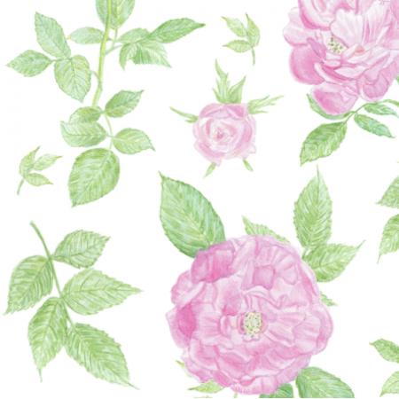 Fabric 17166 | róże