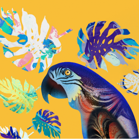 Fabric 17537 | parrot
