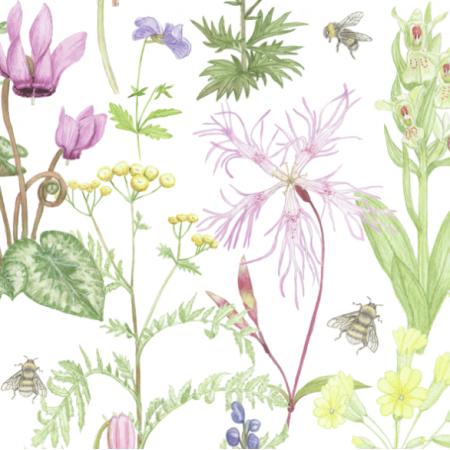 17658 | wild flowers