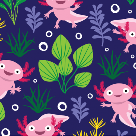 17664 | Axolotl