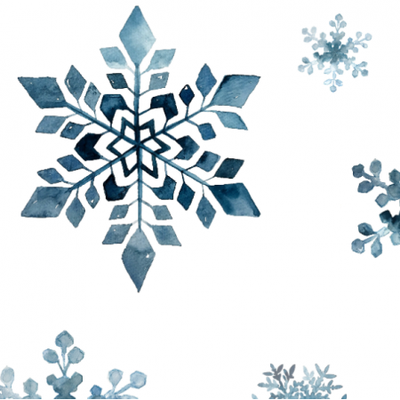 Fabric 17815 | Snowflakes
