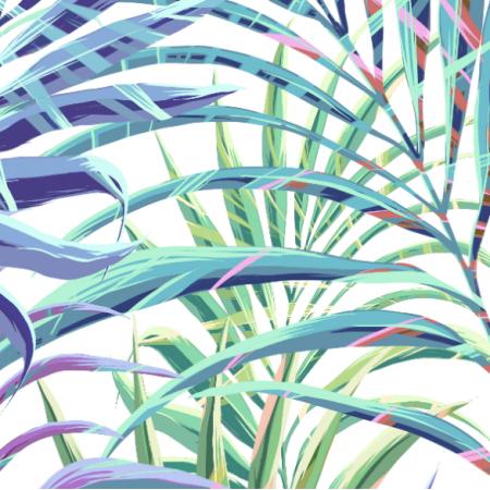17824 | Tropical Palms | Tropikalne palmy