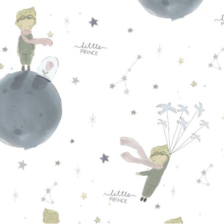 Fabric 17838   little prince
