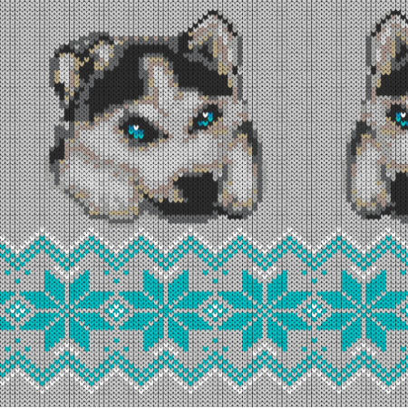 17888 | winter husky