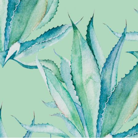 Tkanina 17898 | Aloes na mietowym