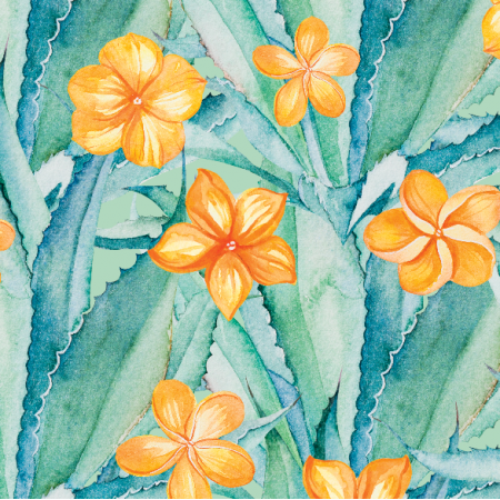 17900 | Aloes i pomaranczowe kwiaty