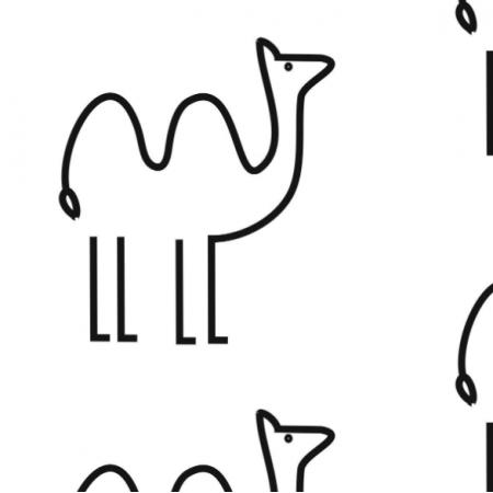 wielbłąd minimalista