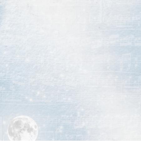 18269 | winter charm pillow3
