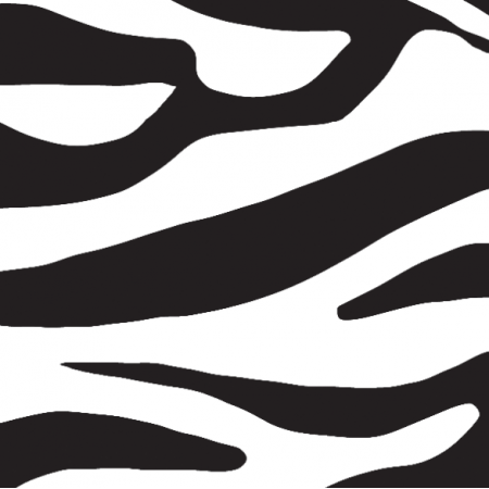 18370 | zebra 04