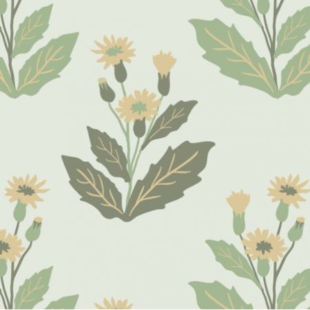 Fabric 18566 | common hawkweed