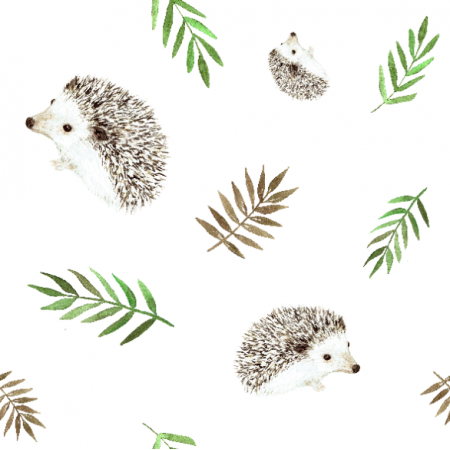 Fabric 18649 | Hedgehogs