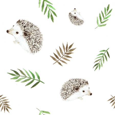 Fabric 18649 | Hedgehogs