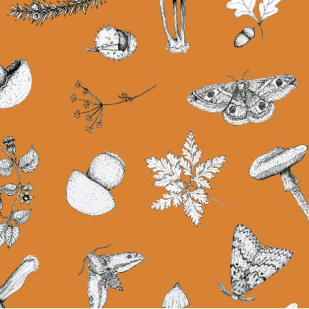 Fabric 18651 | W lesie