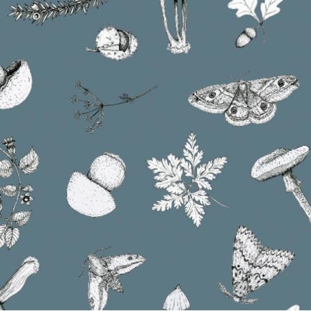 Fabric 18654 | w lesie niebieski
