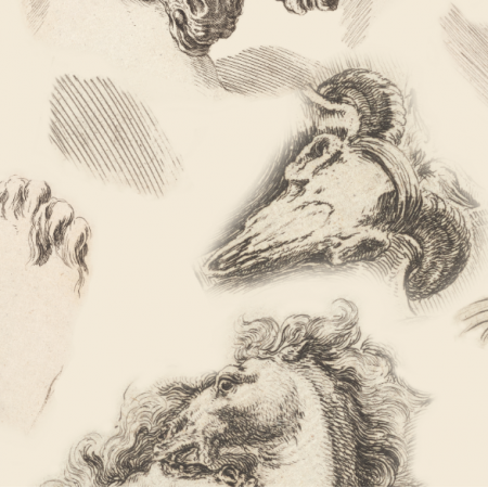 Fabric 18778 | Crazy Horses