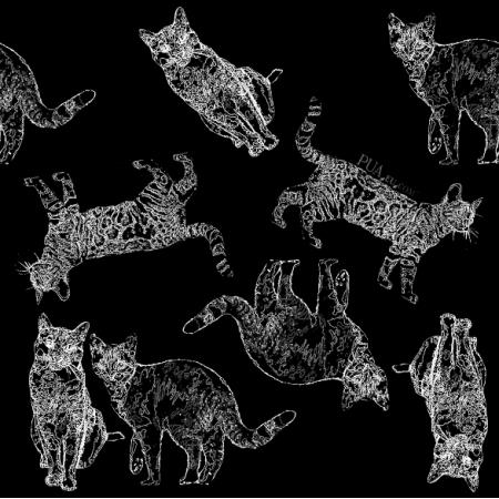 Fabric 18978 | koty na czarnym0