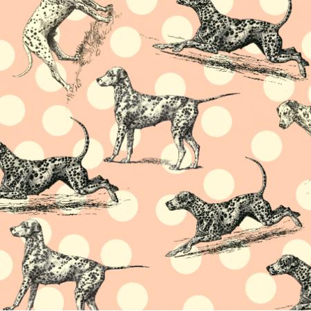 Tkanina 19008 | DalmatyŃczyki - Dalmatian Dogs