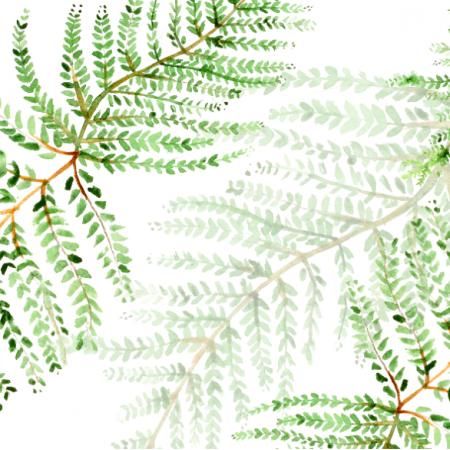 Tkanina 19065 | Paprotka / Fern leaf