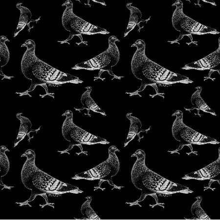 Fabric 19066 | gołębie czarno białe