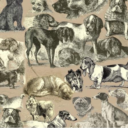 Fabric 19089 | PSIARNIA NA PANTONE WARM SAND