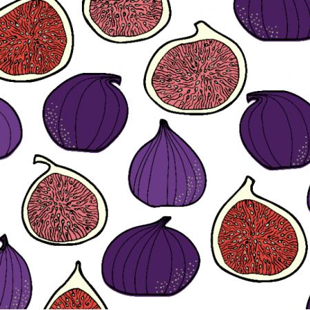 19226 | Figs pattern