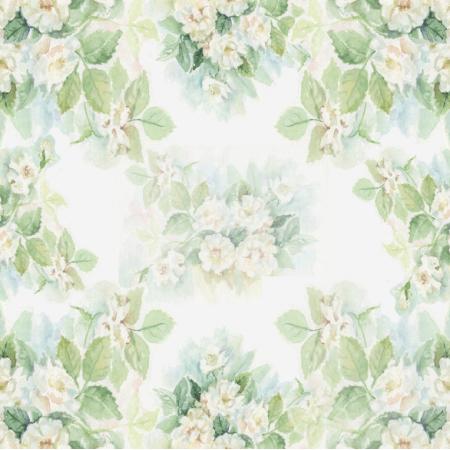 Fabric 19385 | BIAŁE RÓŻE - motyw wiosenny 20cm