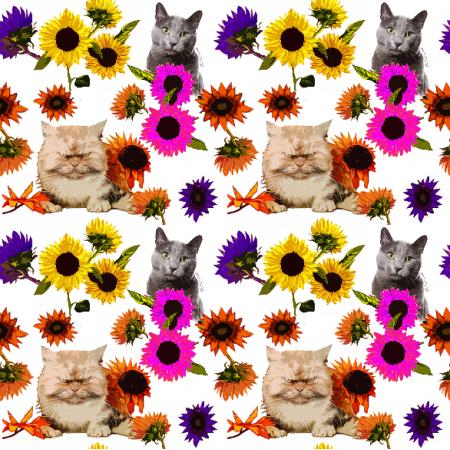 19410 | Koty w kolorowych kwiatach