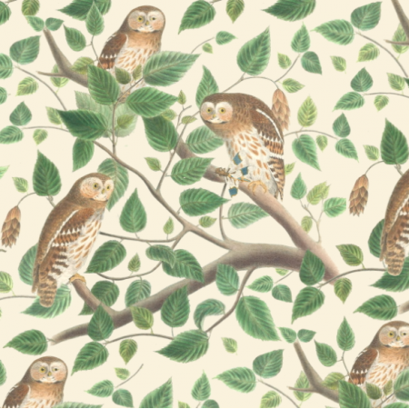 Fabric 19475 | leśne sowy na kremowym tle