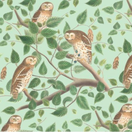 Fabric 19476 | leśne sowy na miętowej zieleni