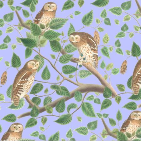 Fabric 19477 | leśne sowy na niebieskim tle