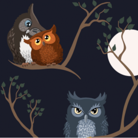 Fabric 19490 | Awww owls (night)