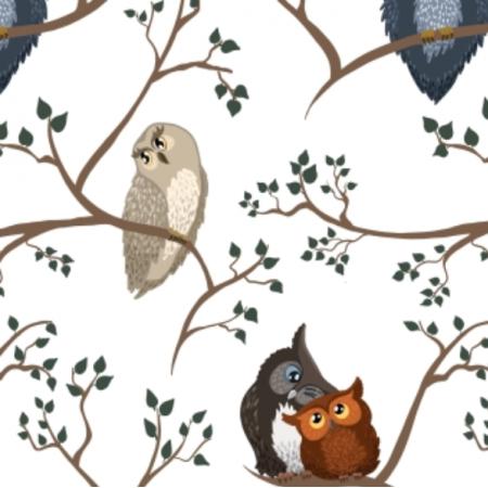 Fabric 19492 | Awww owls