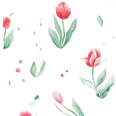 19553 | Tulipany