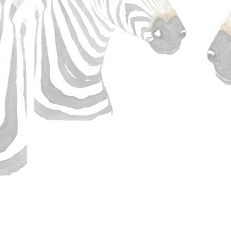 Fabric 19744 | malowane zebry na białym tle