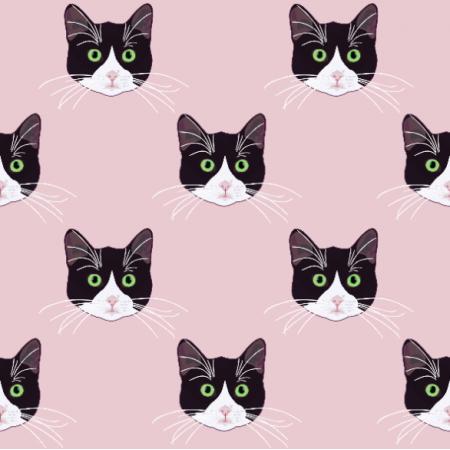 Fabric 19787 | B&W cats pink
