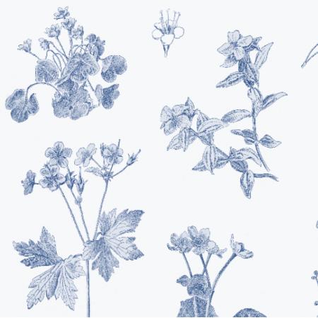 Fabric 20100 | BOTANICZNA ŁĄKA NA NIEBIESKO CLASSIC BLUE