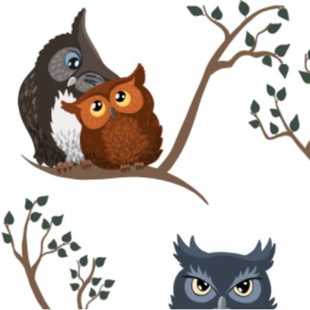 Fabric 20161 |  awww owls