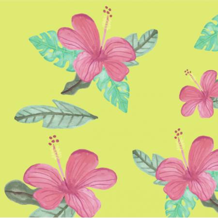 20173 | Tropical Hibiscus0
