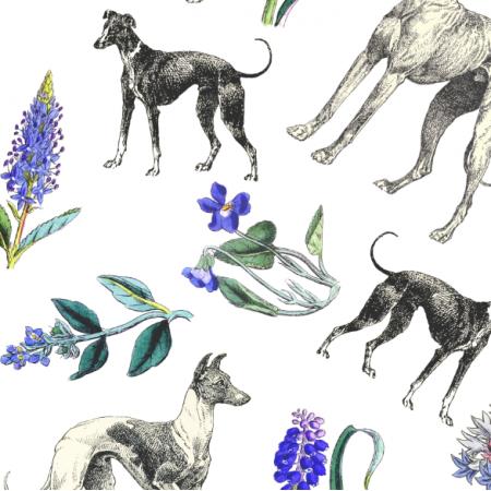 20198 | Psy Charty i niebieskie kwiatki na białym tle