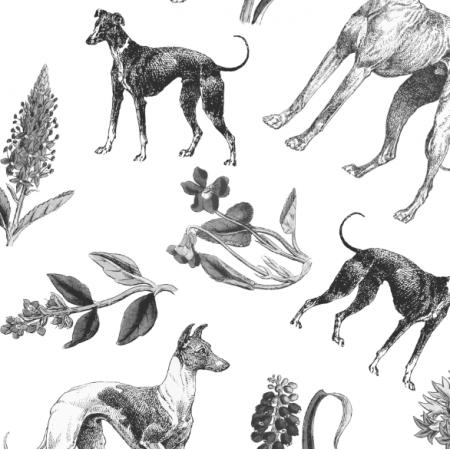 Fabric 20208 | Psy Charty i polne kwiatki Czarno Białe