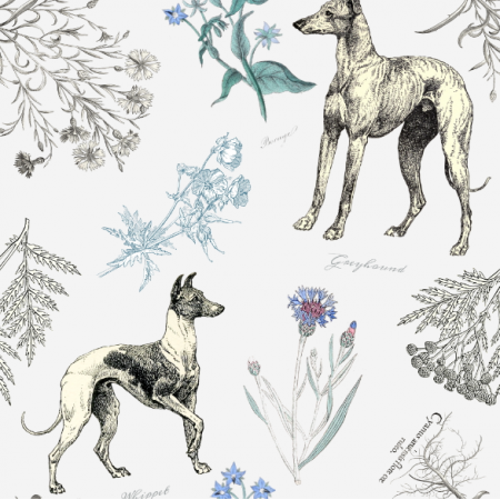 Fabric 20217 | Charty i chabry - białe tło