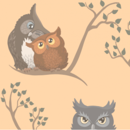 20234 | Awww owls (light)2