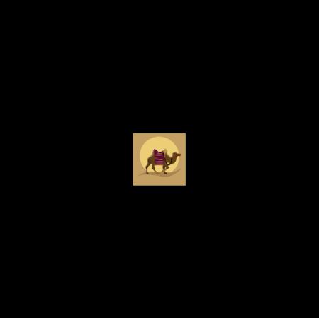 20344 | Pustynna odyseja (panel poduszkowy)